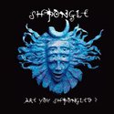 Are you Shpongled ?
