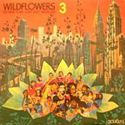 Wildflowers 3 - The New York Loft Jazz Sessions